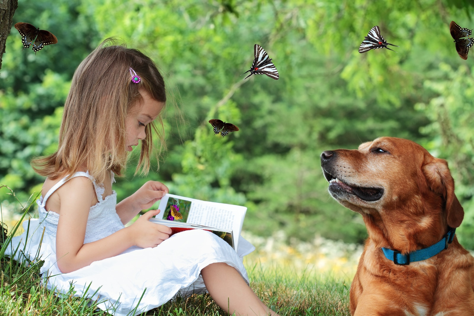 Little girl sits under a tree reading a book about butterflies as dog sits nearby watching butterflies fly around them.