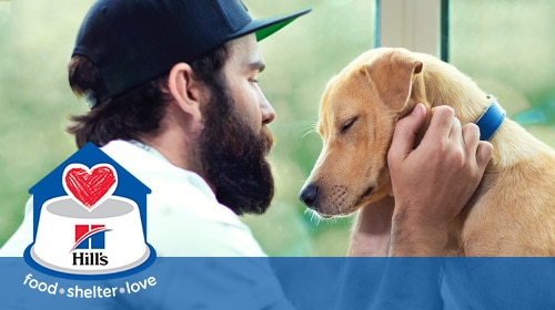 Hill´s Food, Shelter & Love program - owner with his dog