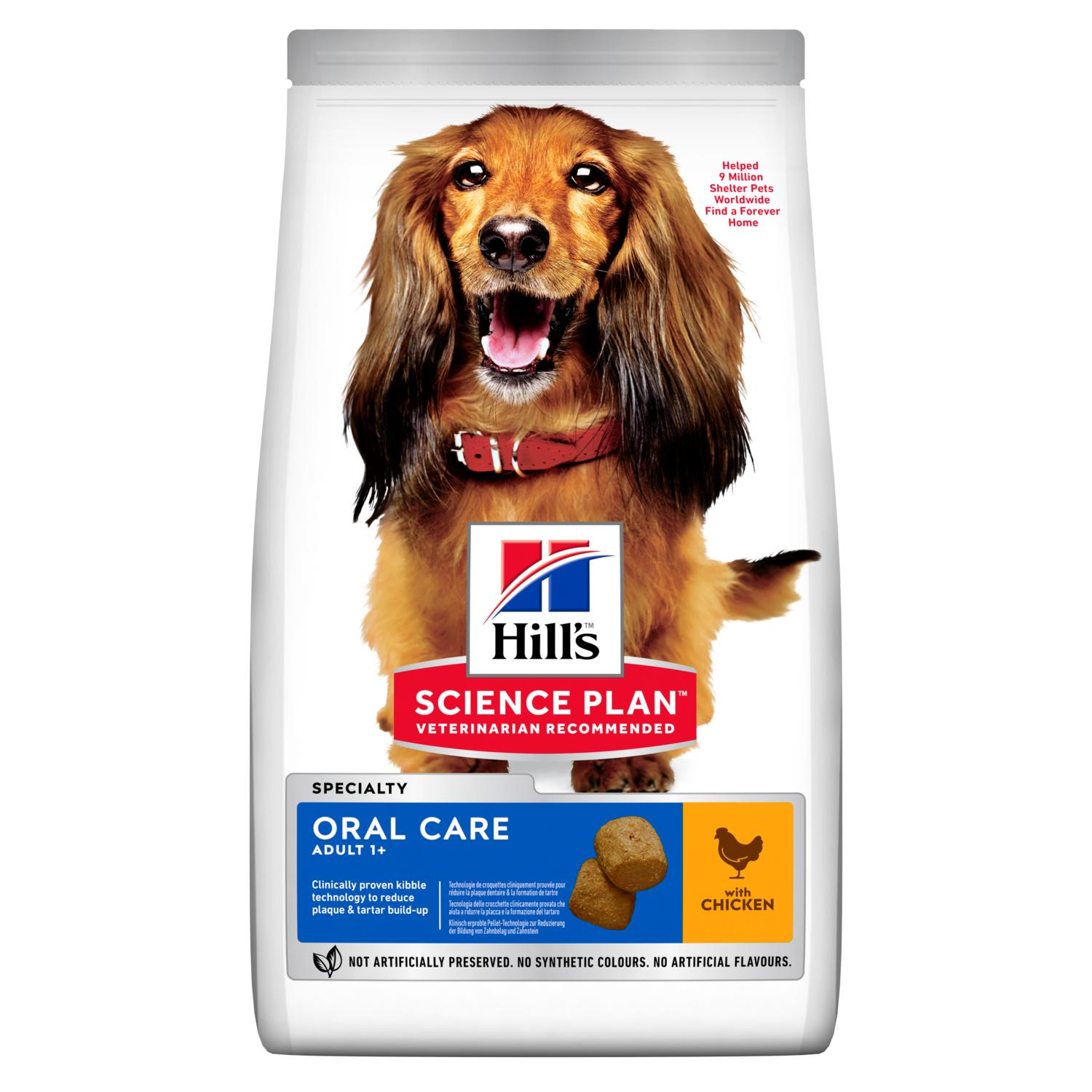 GUIDE TO DOG'S ORAL HEALTH
