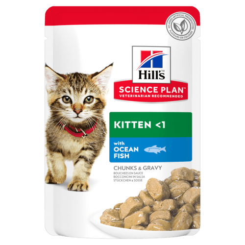 Hills Cat Food Joint Health